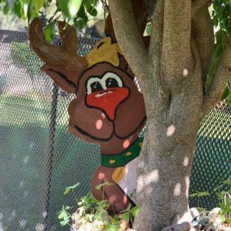 Peeking Reindeer1